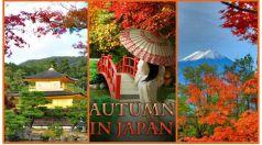 Есен в Япония 13.11.2017